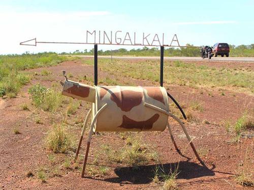 При желании можно оседлать вот такого буйвола :))