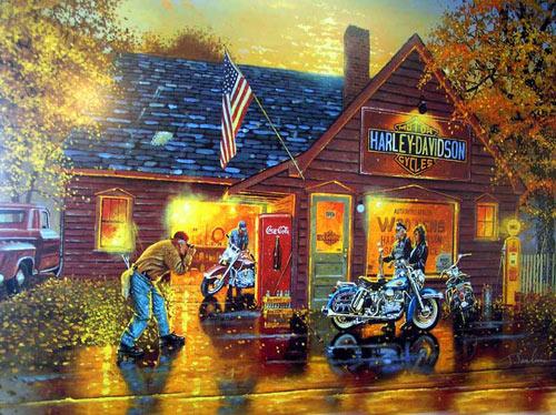Не для кого не секрет, мотоциклы Harley Davidson имеют богатую историю и огромную армию поклонников, но не всегда адекватных :)